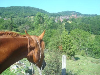 l'équitation passion en correze Index du Forum