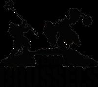 Team BRUSSELS Index du Forum