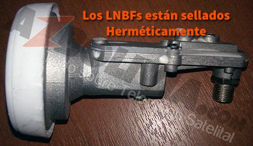 LNBF Abierto