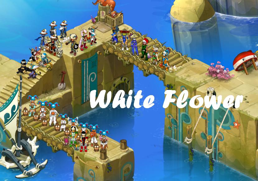 Guilde White Flower Index du Forum